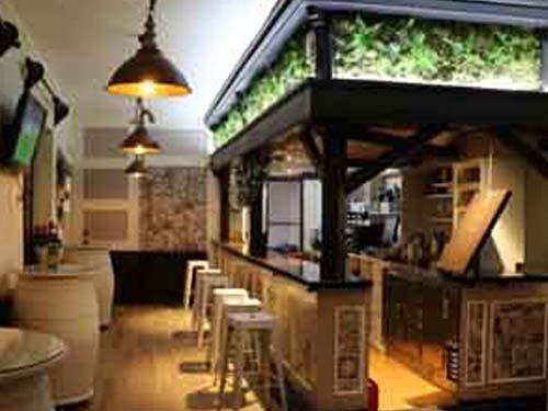 restaurante en sierra nevada gastronomia instalacioenes de la cafeteria 1